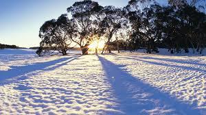 140107 Winter
